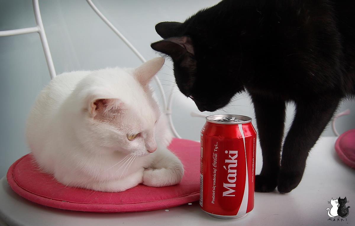 zawsze coca-cola